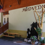 Medvedica pension – 2nd year training for RCM youth leaders